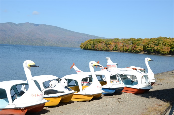 秋季的屈斜路湖显然更有生命力!