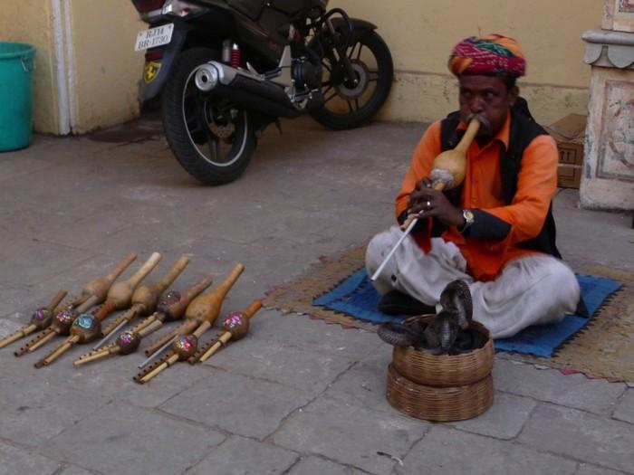 吹蛇,是印度街头艺术表演之一。