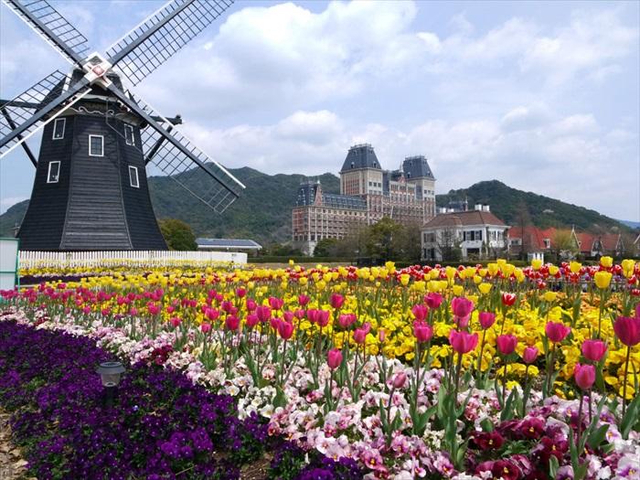 美丽的豪斯登堡,不同的季节伴以不同的鲜花。图为春季,是属于郁金香的。