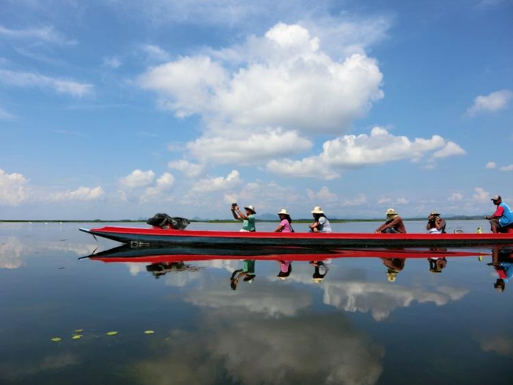 乘着小舟游湖赏美景,那是多么轻松写意的事啊!
