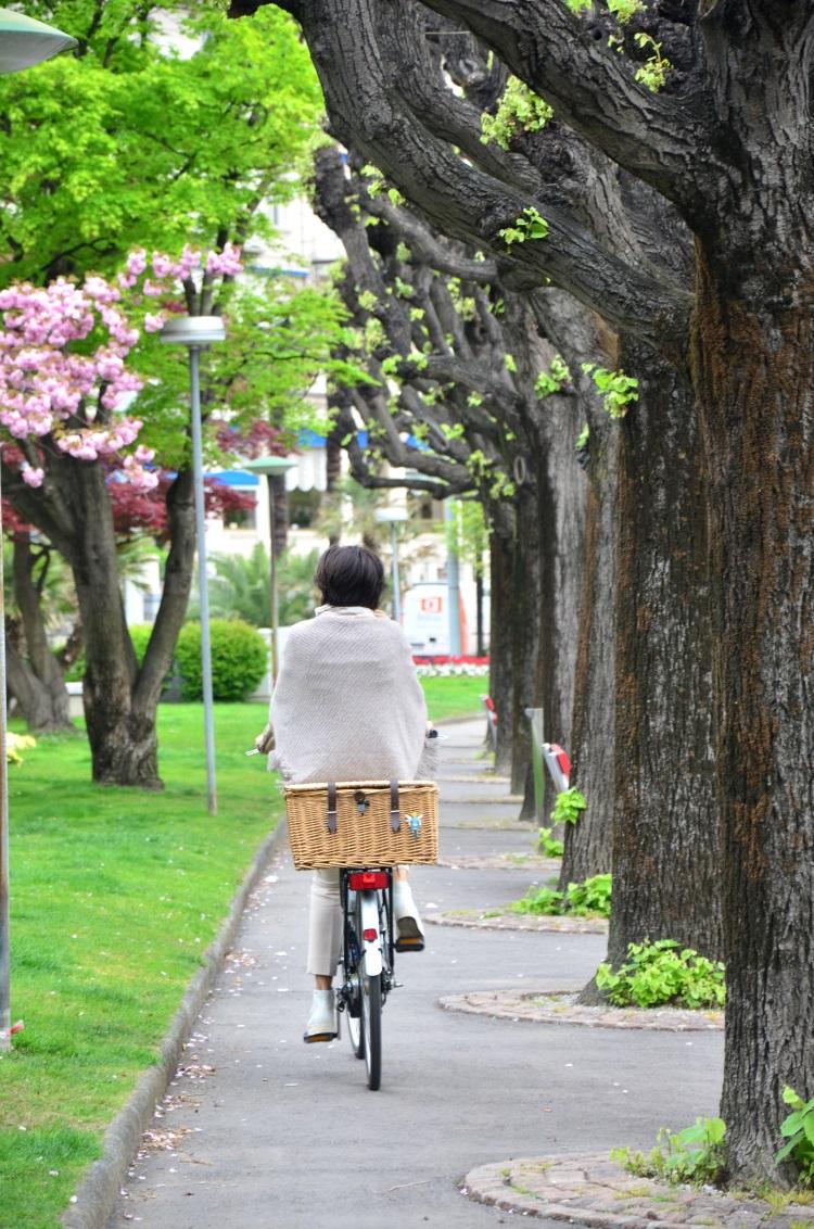 骑单车溜狗晨运的当地人,以湖畔美色开始一天的作息。