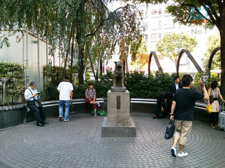 别忘了到JR涉谷车站前和著名的忠犬八公像拍照留念哦!