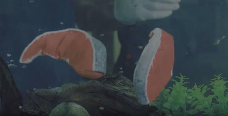 让它们成为会游泳的鲑鱼片!