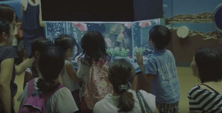 """看着鱼缸,沉淀在""""十万个为什么""""的世界里..."""