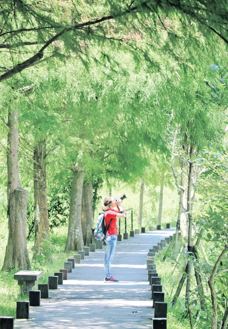 .环湖步道‧漫步在湖边,像走进陶渊明的桃花源中。