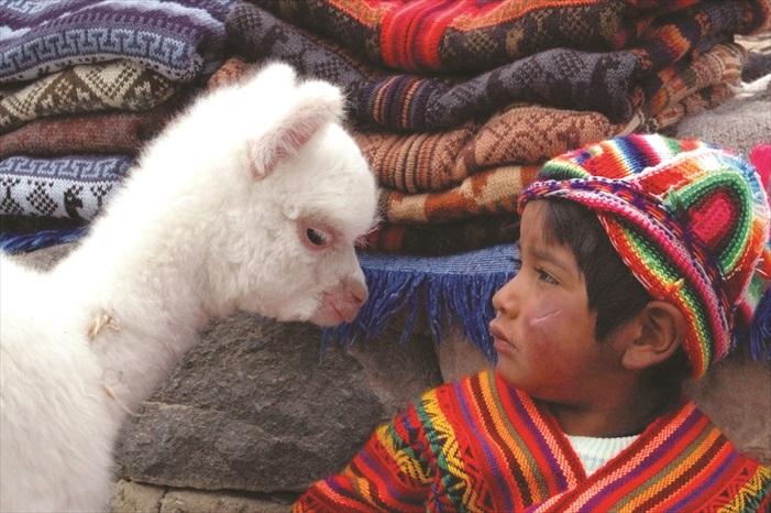 草泥马与穿着传统服装的小孩。