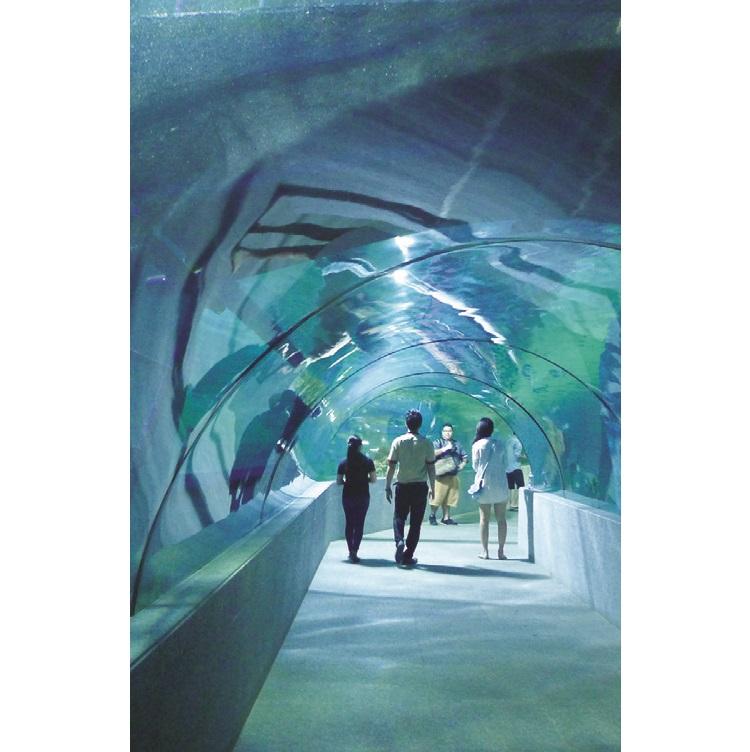 长达数十公尺的海底水道。