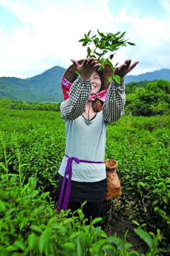 换上一身采茶装,亲身体验茶农的生活。