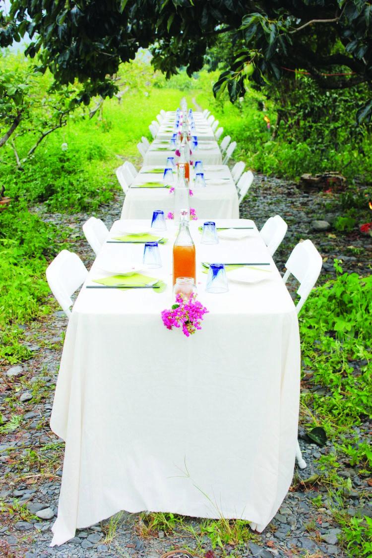 我们被安排在果园里进餐,一列长长的白餐非常有浪漫情调。