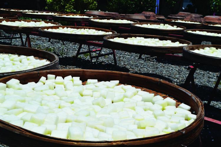 腌制的黄豆和豆腐在烈日下整齐的并排着。
