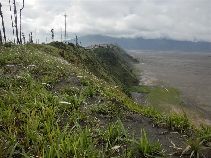 Cemoro Lawang小镇就在一片绿意的断崖之上。