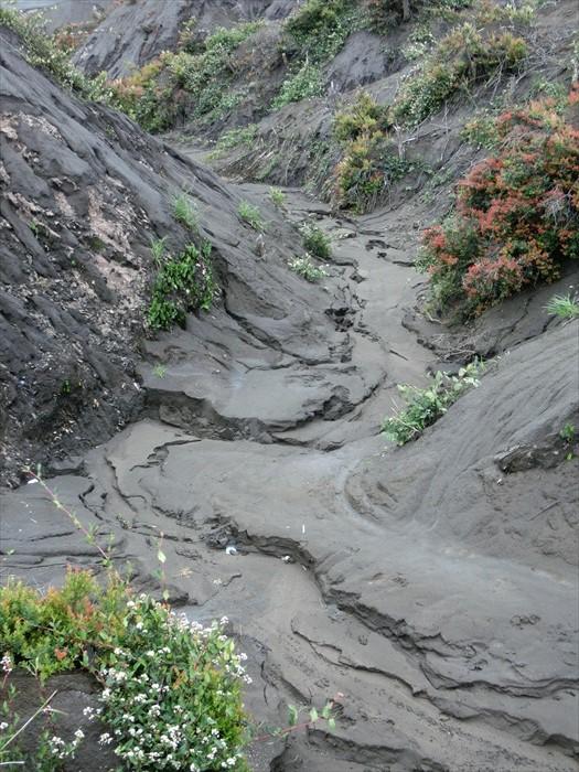 """没想到暗淡的火山灰,竟是富饶土地的""""肥料""""。"""