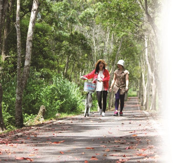 北环自行车道是园区里赏树听鸟最过瘾的区域。
