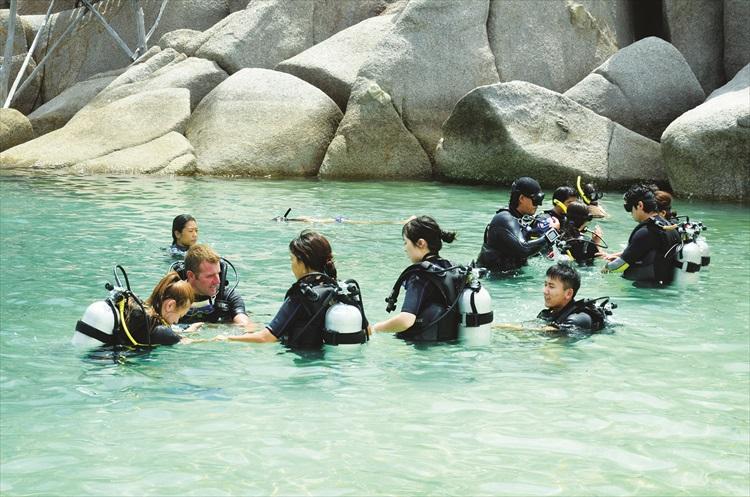 这里拥有美丽海洋生态,吸引许多潜水客。