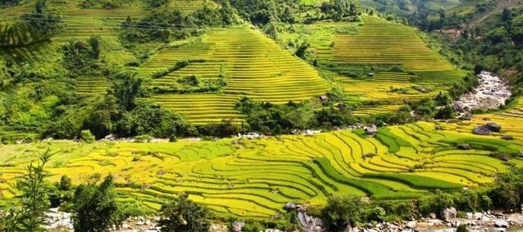 Muong Hoa Valley(二)