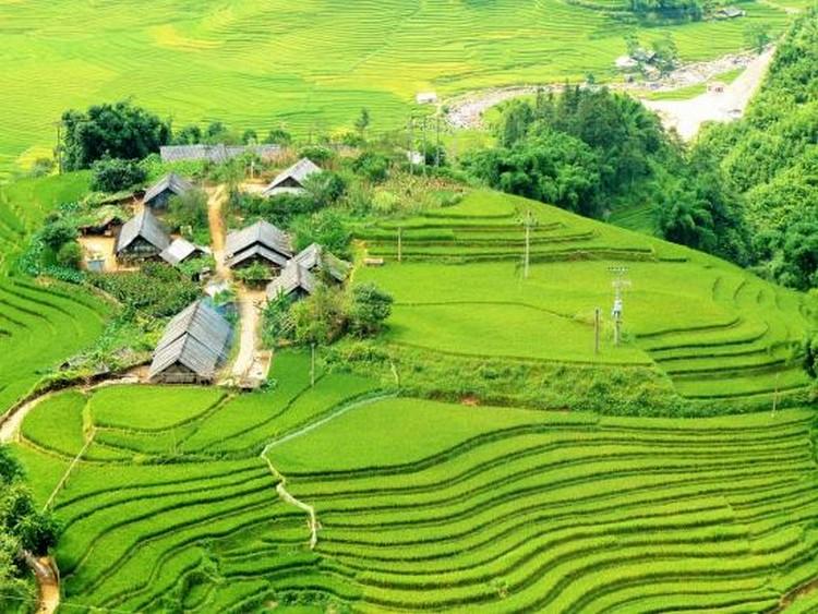 Muong Hoa Valley(一)