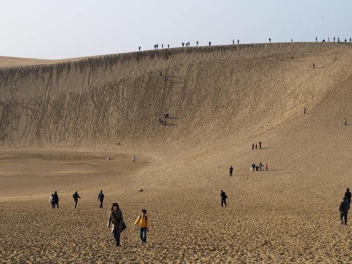 鸟取沙丘位于鸟取市日本海海岸,东西长16公里,南北宽2.4公里,最大的砂丘落差约有90米,是山阴海岸国立公园的特别保护地区,为日本最大的观光砂丘,并在1955年日本政府指定为天然纪念物。