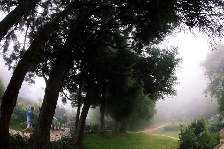 云雾袅袅的雪霸休閒农场一年四季都吸引不少游客前去享受宁静自在的假期。