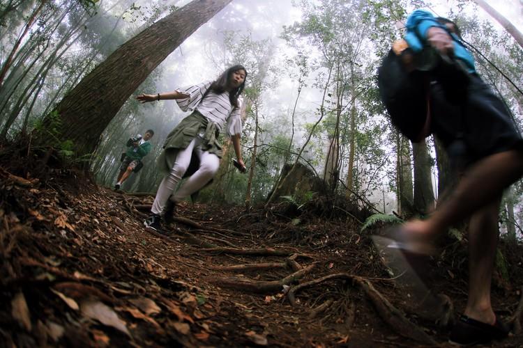 农场内规划的森林小径﹐是住客们观察各类高山动植物生态的好去处。