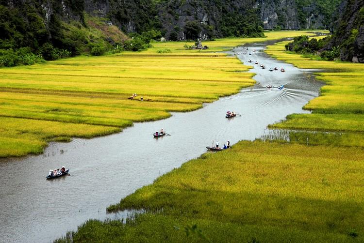 乘坐小船欣赏三古农田的田野风光,青山绿水的环境无受世间纷扰!
