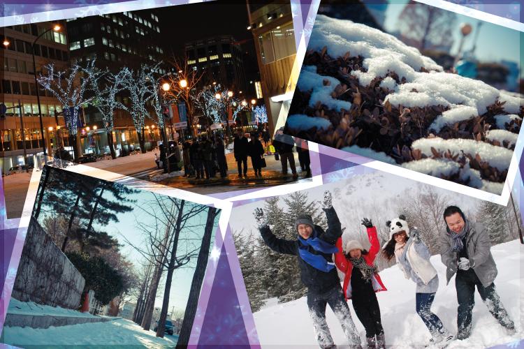 美好的冬季时刻,感受你想要感受的!
