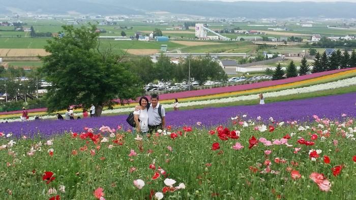 游客们可以在这色彩缤纷且具层次美的花田中,拍下一张张地美照留念。