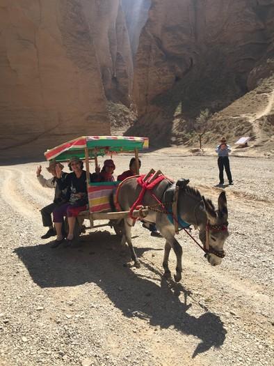 行程中,还骑乘了骆驼、驴子车等。