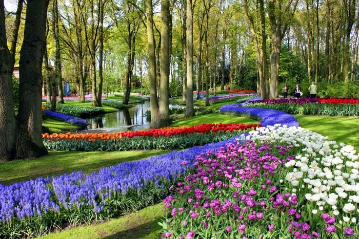 每年春天,库肯霍夫公园就会绽放上百万朵郁金香以及其他球根花卉,造就出一片全球瞩目的花海。