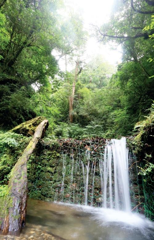 拉拉山自然保育区 停驻在迷你瀑布听潺潺水声,是一种享受。