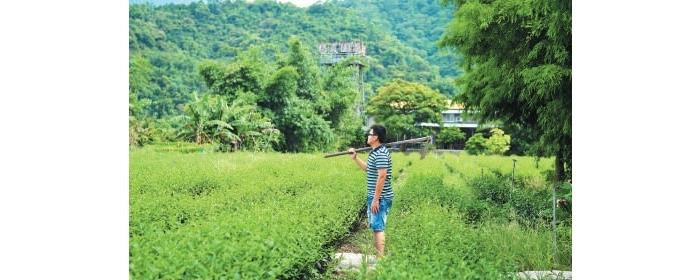 年纪轻轻的刘景源放弃大都会的物质享受, 回到家乡拿起锄头当农夫。
