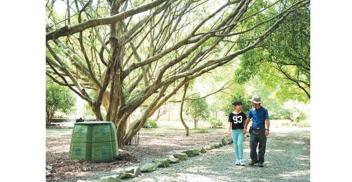 和孩子漫步在清新幽静的农场里,是老板林文龙最幸福写意的事。