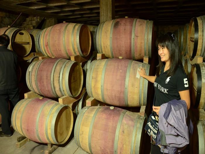 参观酒的酿造地——酒窖。