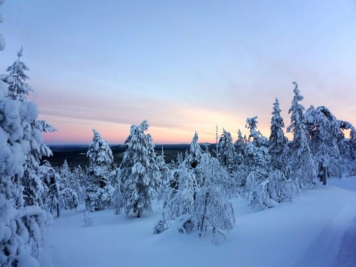 美丽的芬兰雪景。