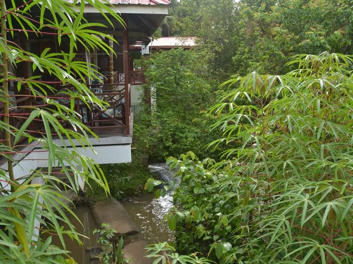 绿意盎然的民宿与潺潺流水