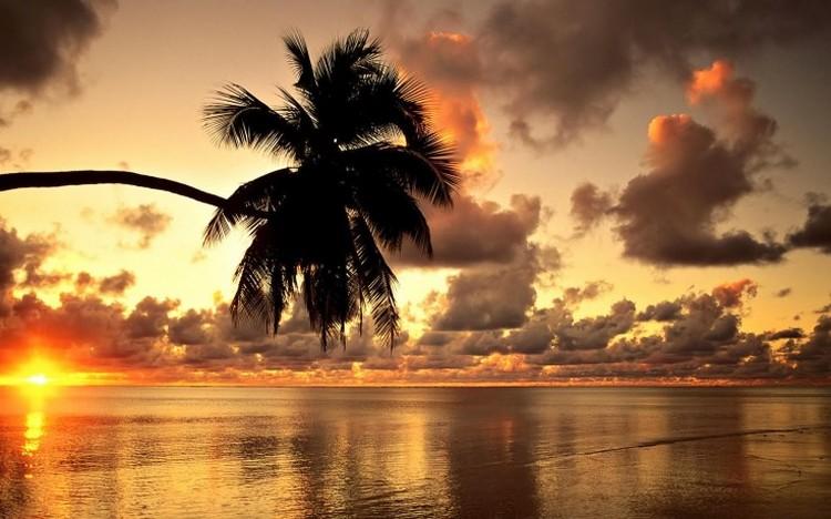 当海边配上迷人的黄昏,夏威夷也是伴侣渡假的理想选择地哦!
