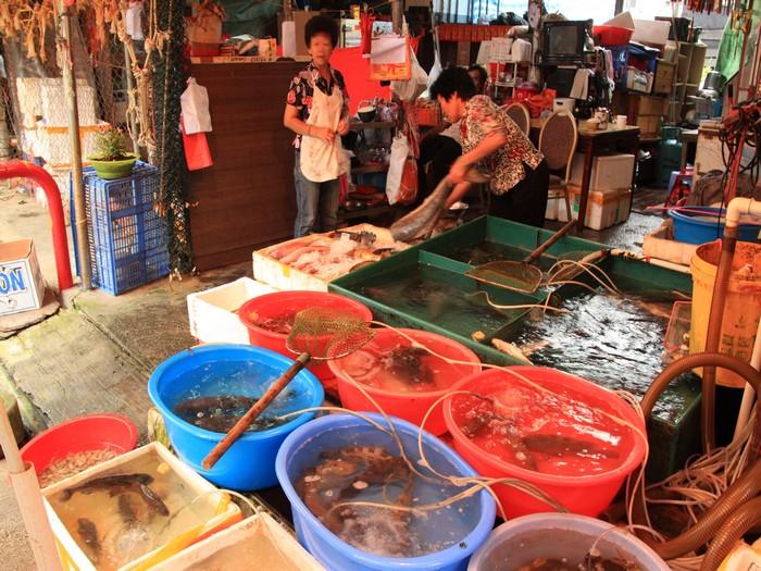 除了晒干渔产外,当然也少不了鲜活的。