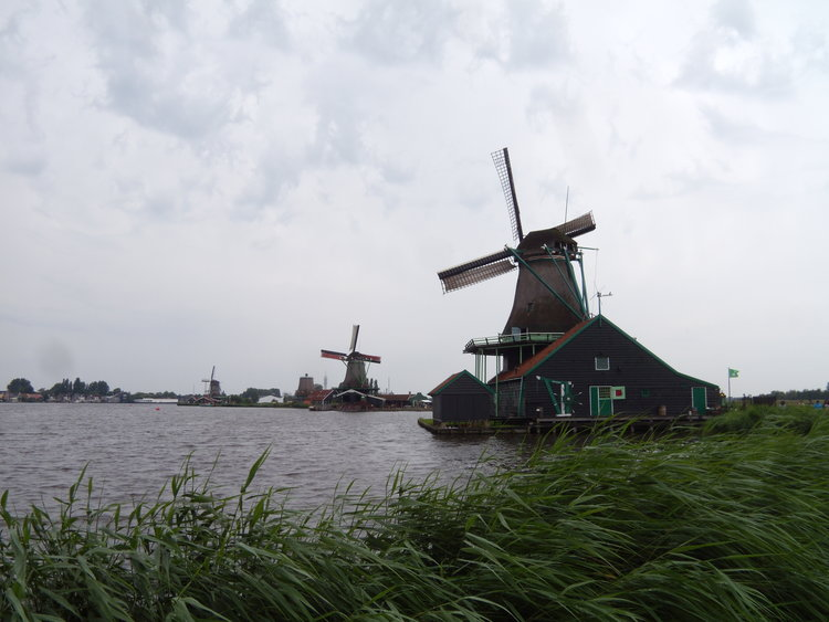 荷兰,Hoe goat het?