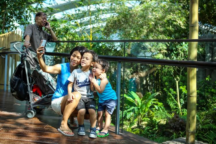 难得来到大熊猫竹林,看见凯凯和嘉嘉,当然不会放过合照的机会!