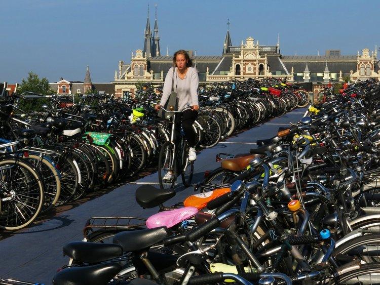"""茫茫的""""自行车海""""中找到了自己的自行车,成就感很高啊!"""