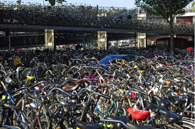 耐心一点还是能够找到自己的自行车的~