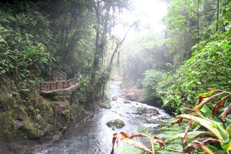 拉巴斯生态瀑布与小溪是哥斯达黎加重点保护的热带雨林。