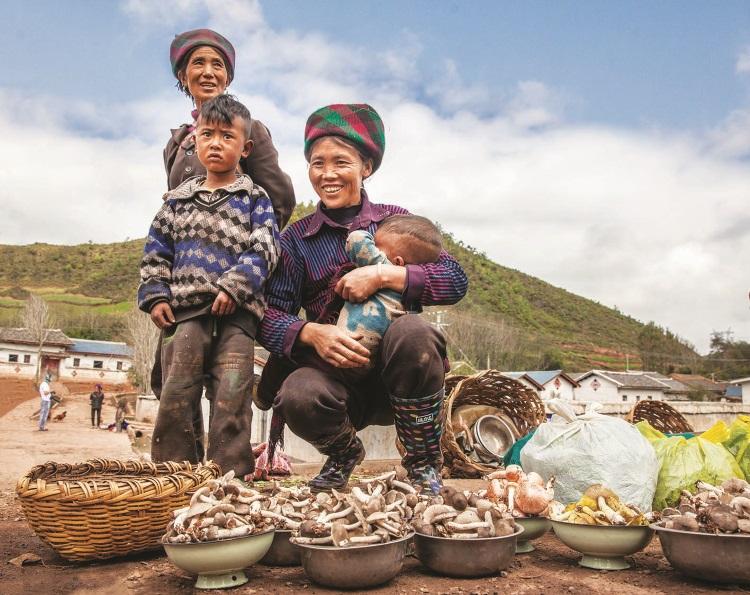 彝族妇女抱着牙牙学语的婴儿,在路边席地而坐贩卖野菇和自己栽种的蔬菜。