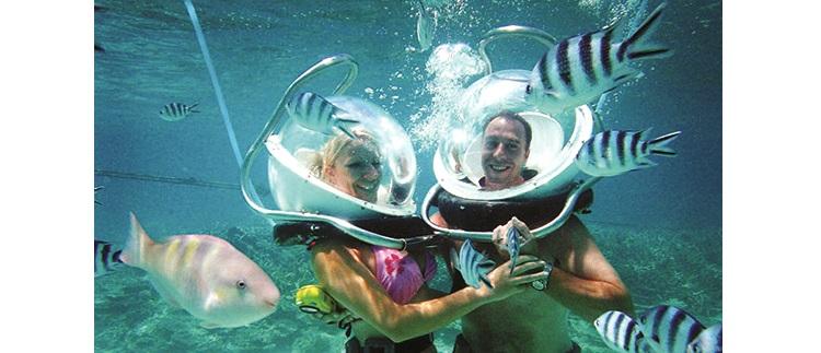 不会游泳没关系,带上充气头盔,在教练的指导下,就如同在陆地上漫步一般探索精彩的海洋世界。