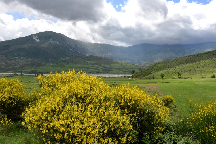 Albania's picturesque scenery.