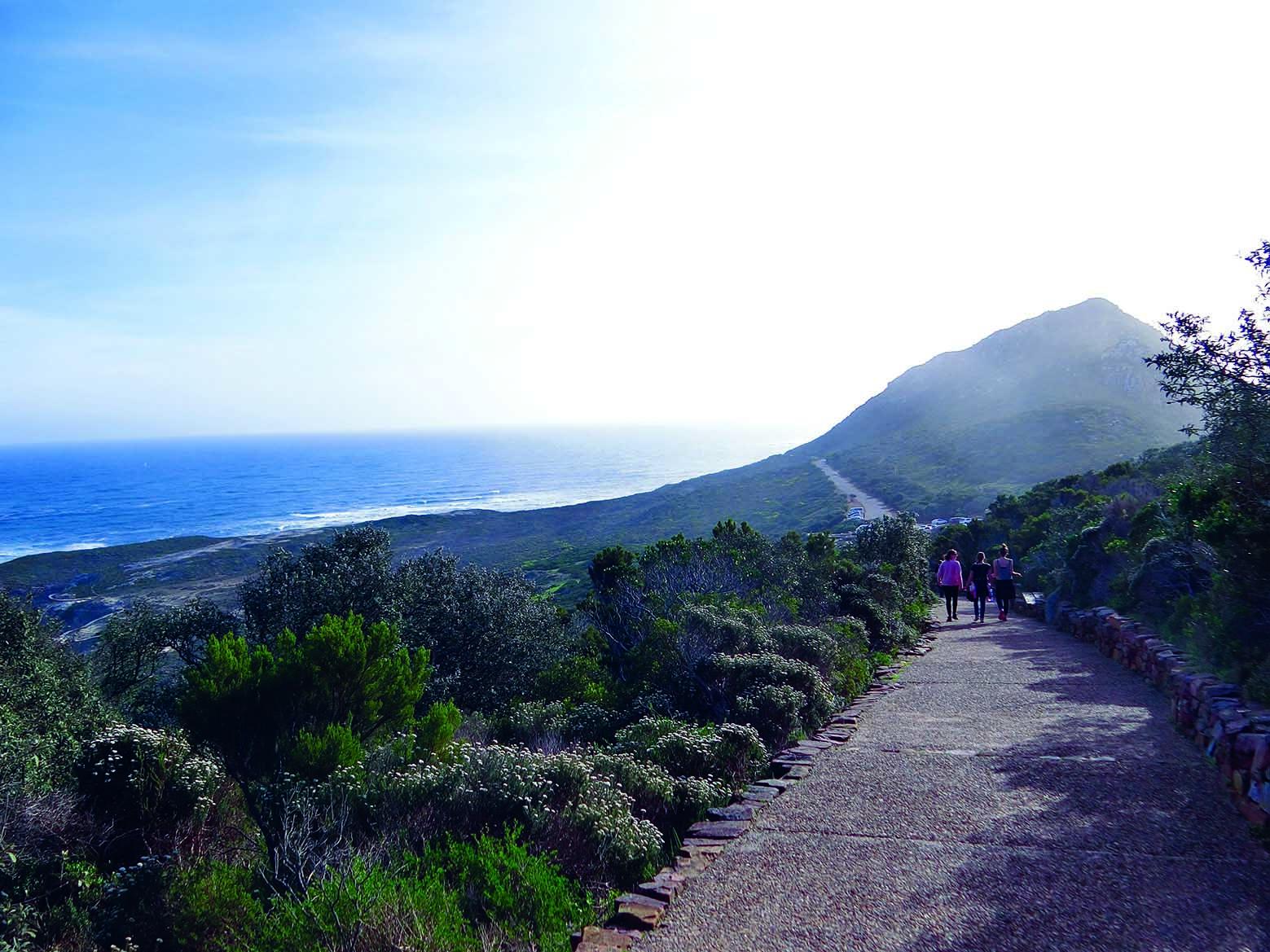 步行上山让我们看见了更多大自然的美景。