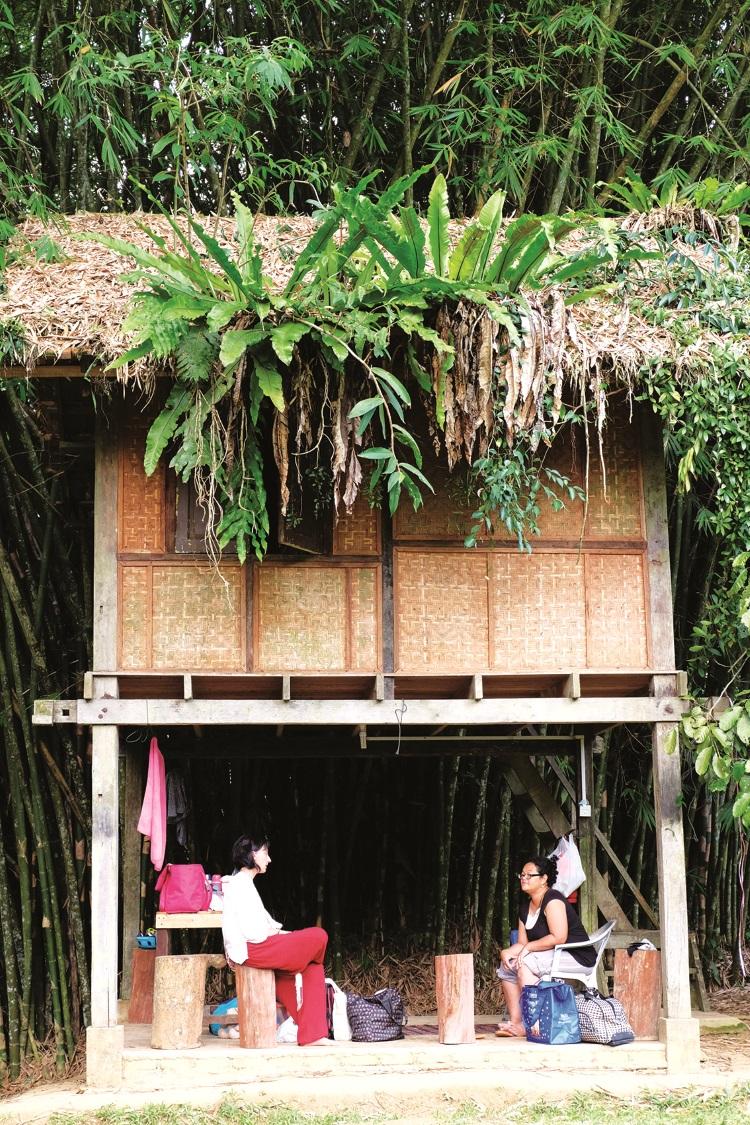 Zaini Guest House, 前来的客人都是大自然爱好者。
