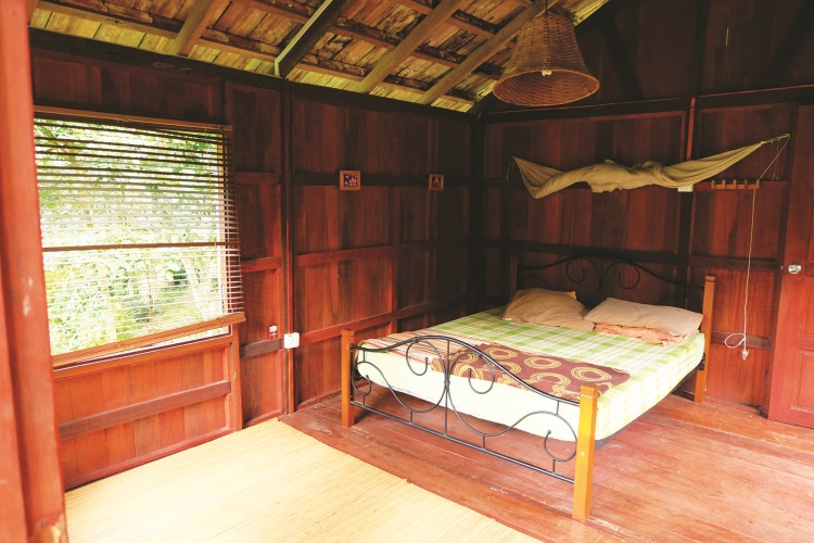 民宿的设计,让旅人与大自然紧紧结合。(p/s:温馨建议前来游玩的客人,准备手电筒和防蚊膏)[三]