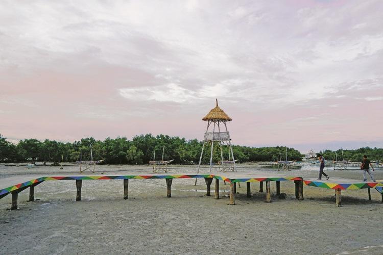 拉普拉普纪念碑公园旁的红树林,涨潮时可乘搭小船一探红树林生态。