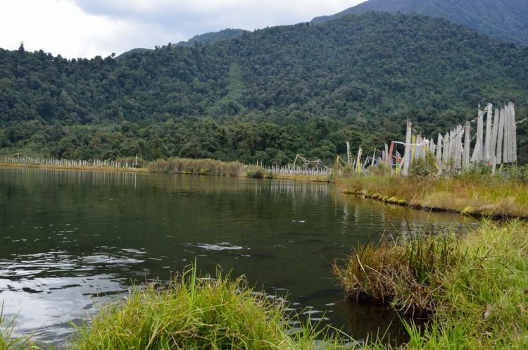 湖泊环绕在青草绿荫之中,却没有一片叶子漂浮在湖面上。