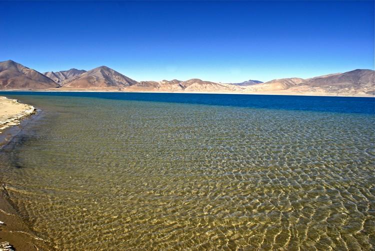 清澈的湖水,是多种鱼类和鸟类的家园。